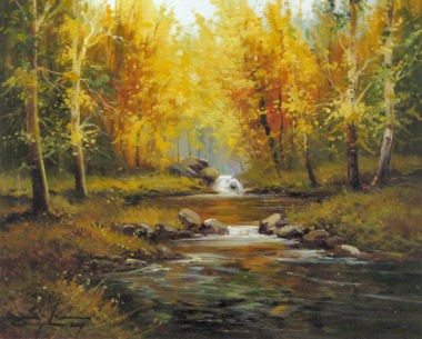 Forest River II
