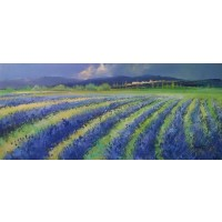 Lavender Fields No.1
