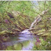 Woodland Waterfall No.1